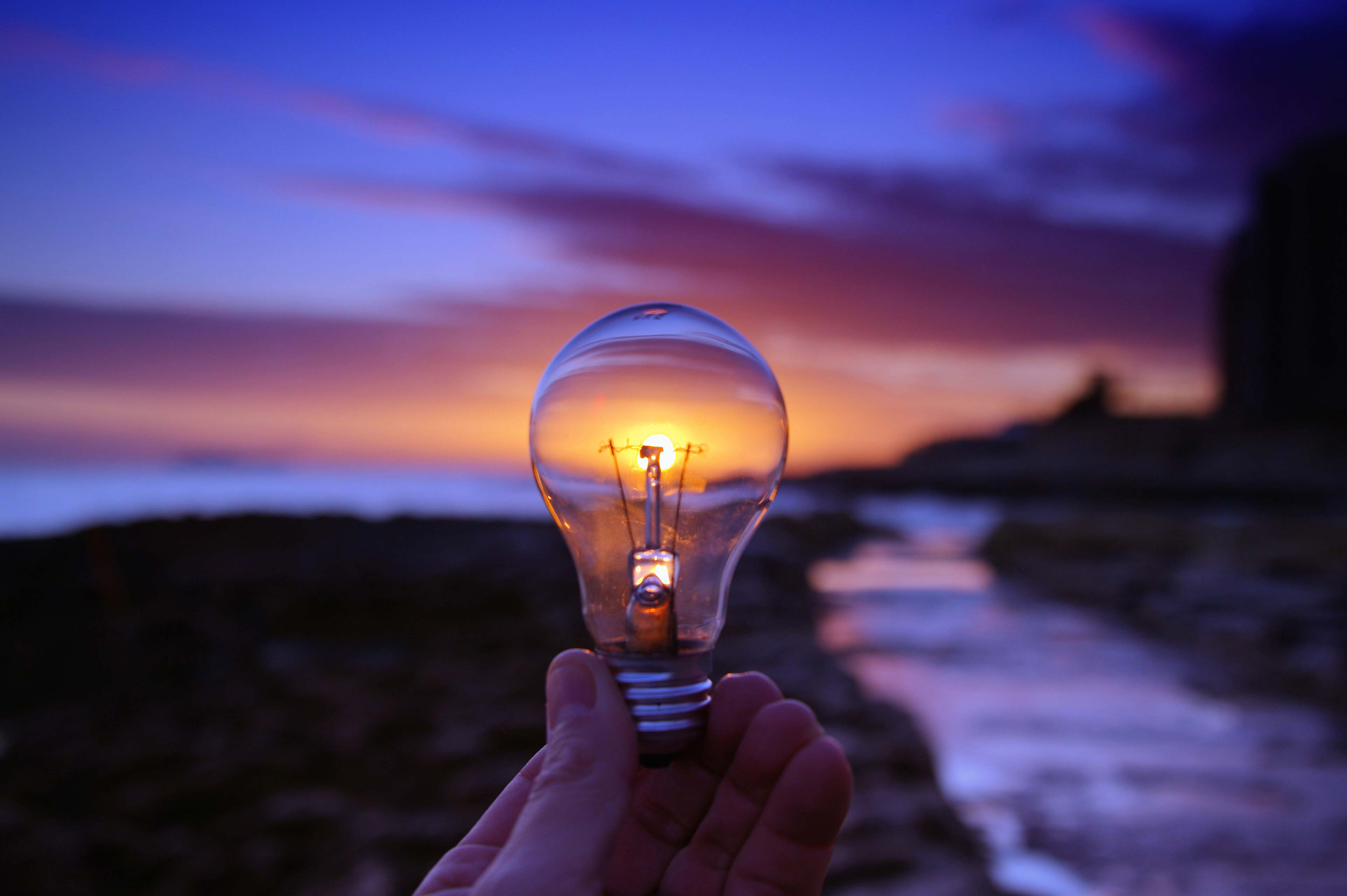 Light bulb sea